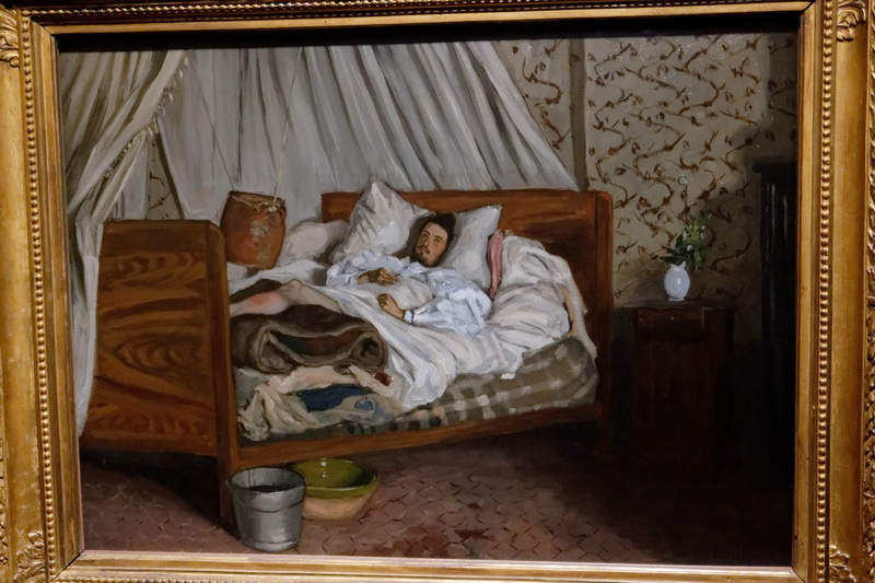bazille 14